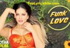 funk love lyrics