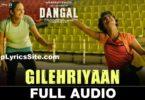 Gilehriyaan Lyrics