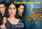 Mein Na Janoo OST Lyrics