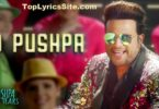 O Pushpa I Hate Tears Lyrics