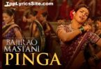 Pinga Lyrics