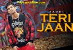 Teri Jaan Lyrics