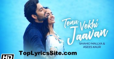 Tenu Vekhi Jaavan Lyrics