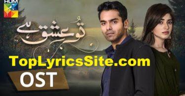 Tu Ishq Hai OST Lyrics