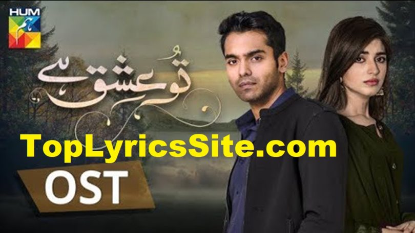 Tu Ishq Hai OST Lyrics