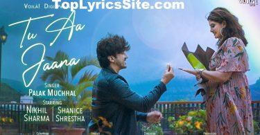 Tu Aa Jaana Lyrics