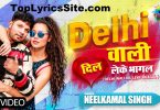 Delhi Wali Dil Leke Bhagal Lyrics