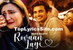 Rovaan Layi Lyrics