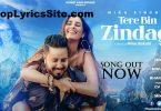 Tere Bin Zindagi Lyrics
